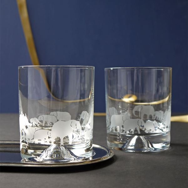 Tusk Elephant Etched Glass Tumblers