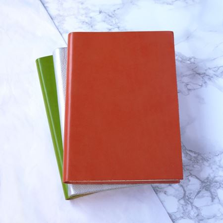 Coloured Leather Notebooks in A5 & A6