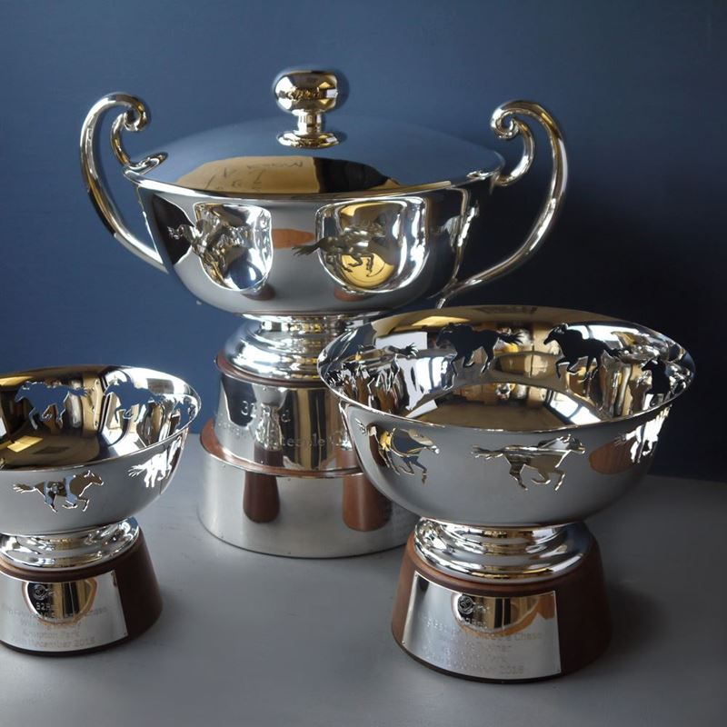 Picture for category Trophies, Cups & Awards