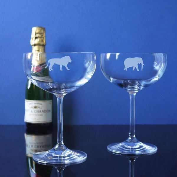 Tusk Champagne Coupe