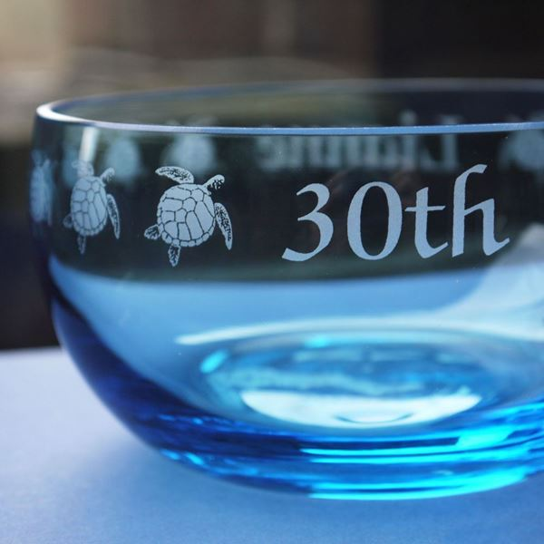 Coloured Glass Bowl - Turtles