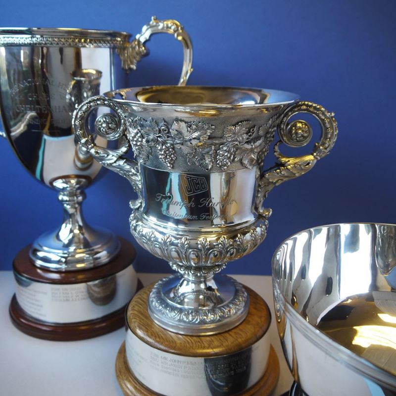 Picture for category Trophy Restoration Service