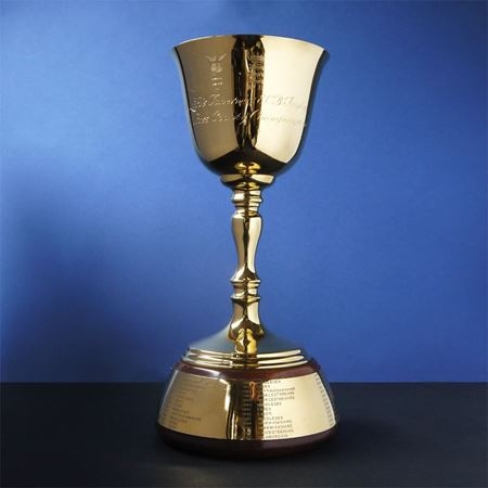 The Lord's Taverners ECB Trophy - Gold