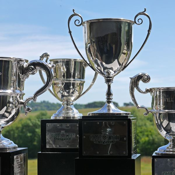 Picture of Trophy Restoration Service